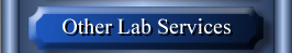 Other Lab Services